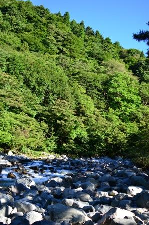 めっちゃ川の水がキレイな本谷オートキャンプ場へ行ってきた。